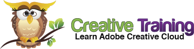 Creative Training Owl Logo